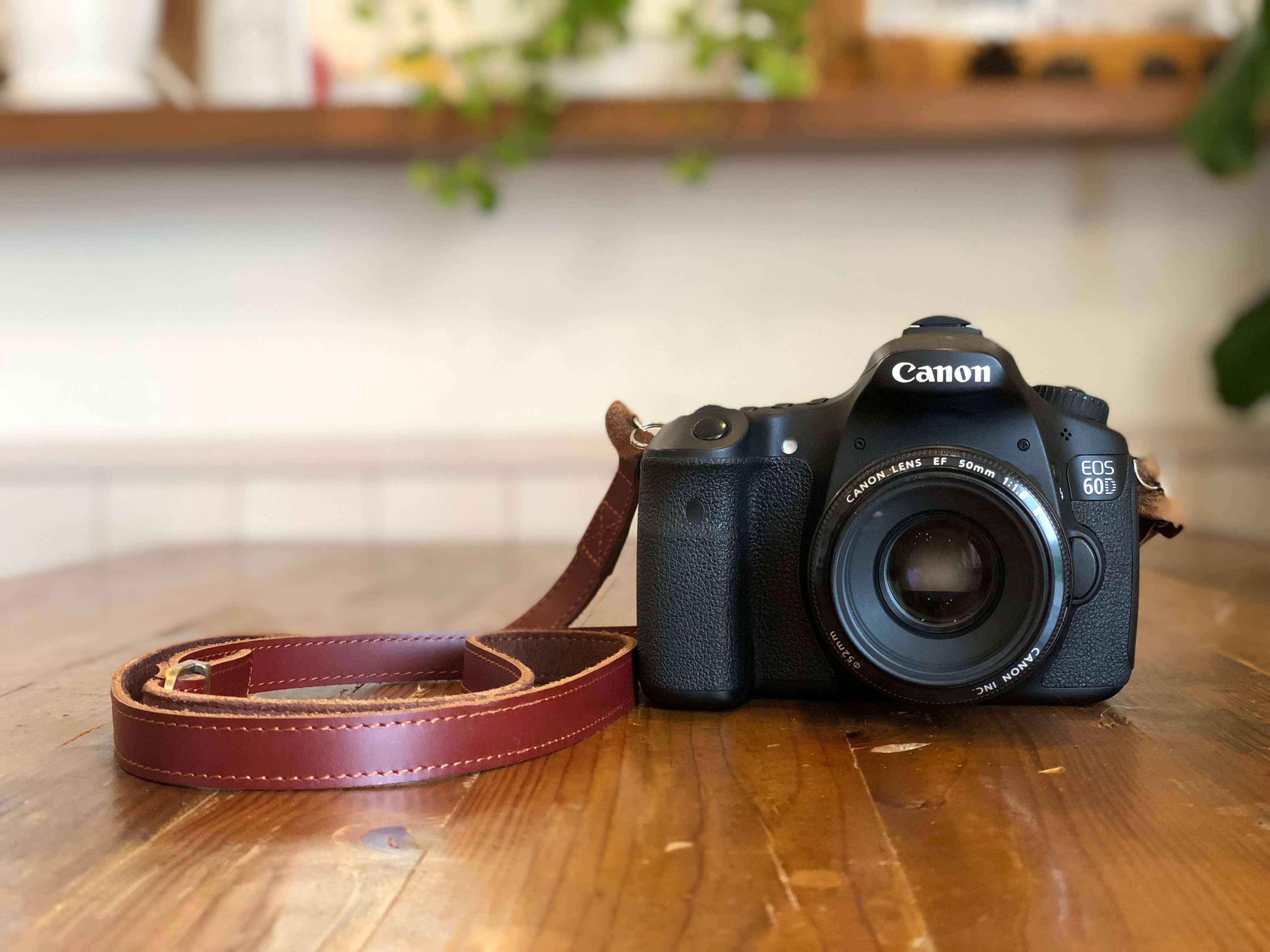 CANON EOS 60D 写真