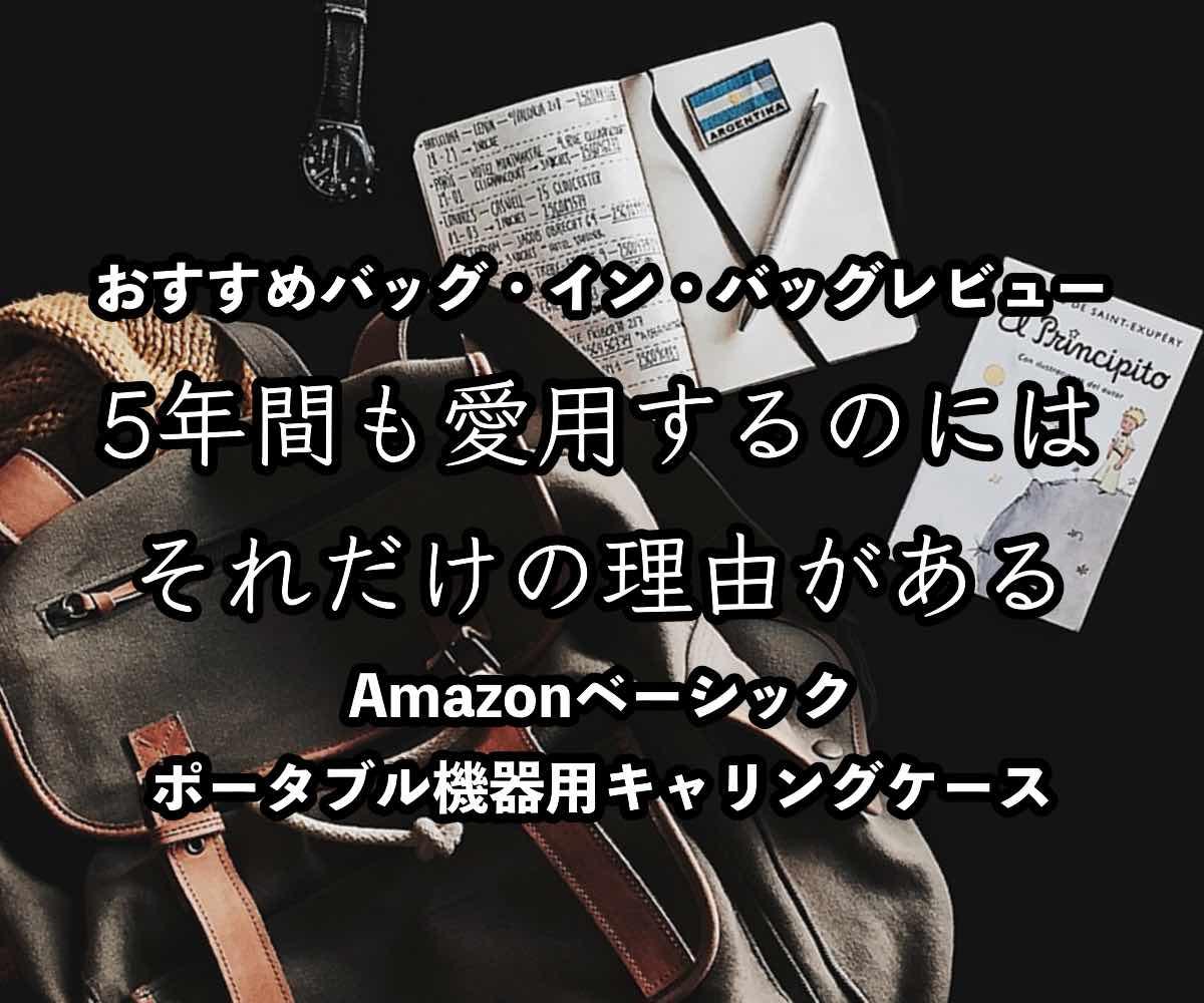 Amazonキャリングケースについての記事のアイキャッチ画像