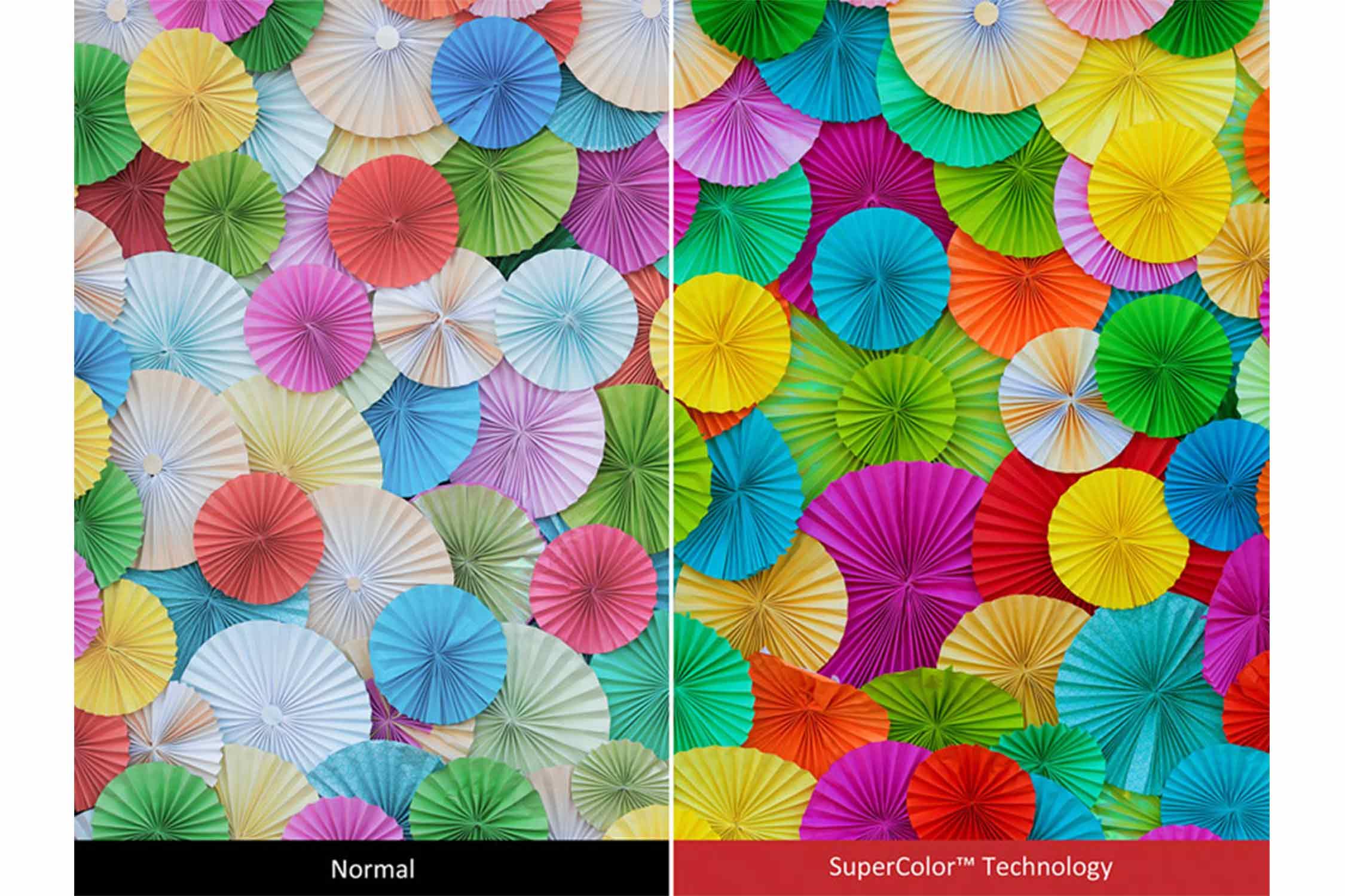 素晴らしい色精度 イメージ
